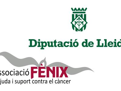 La Diputació atorga un ajut de 4.000 euros a l'Associació Fènix