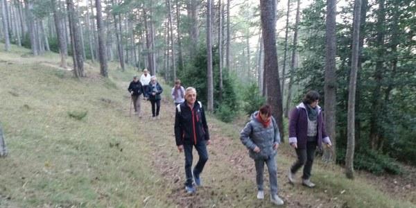 L'Associació Fènix passa una tarda de Banys de Bosc